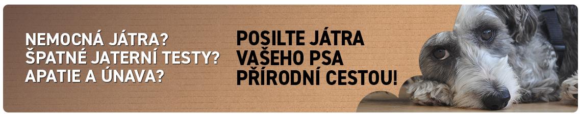 ŠPATNÁ JÁTRA